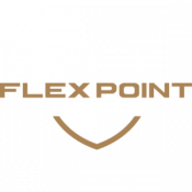 Flex Point Security company logo